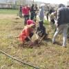 Amasya'da Üniversite Öğrencileri Fidan Dikti